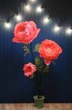 巨大的成长桃红色在蓝色墙壁背景的内部开花有减速火箭的诗歌选的 免版税库存图片