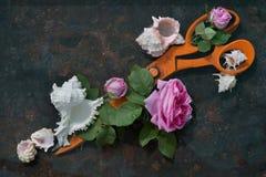 巨大的橙色金属剪刀对角地在黑背景说谎,装饰用开花的花桃红色玫瑰和白海壳, 库存照片