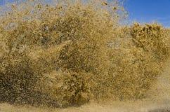 巨大的泥泞的飞溅 库存图片