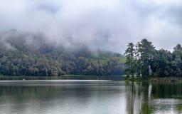 巨大的湖美好的风景,有树的和薄雾制造镇定的气氛 免版税库存照片