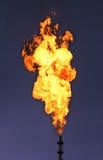 巨大的火炬 免版税库存图片