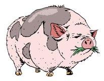 巨大的猪的动画片图象 库存例证