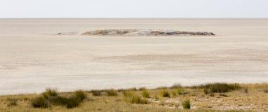 巨大的盐平底锅中央的一个宽播种的看法对Etosha野生生物储备的在纳米比亚,在长,热,干燥期间结束时 免版税库存图片