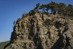 巨大的美丽的纯粹峭壁长满与绿色森林它有美丽如画的水平的条纹 一清楚的天空蔚蓝在一好日子 免版税库存照片