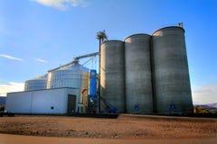 巨大的谷物仓库复合体 免版税图库摄影