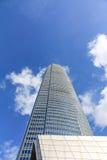 巨大的高楼 免版税库存照片