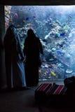 巨大的水族馆在一家旅馆亚特兰提斯里在棕榈群岛上的迪拜 库存图片