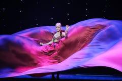 巨大的紫色裙子印度记忆这奥地利的世界舞蹈 免版税库存照片