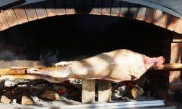 巨大的jamon猪 免版税库存图片