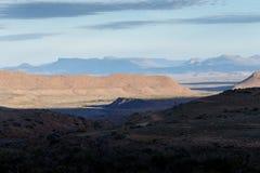 巨大看法-野生生物公园-西部的Beaufort 免版税图库摄影