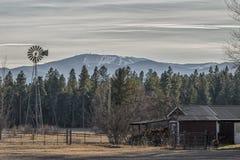 巨大蒙大拿州 库存照片