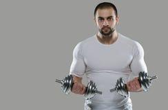 巨大锻炼 肌肉专业爱好健美者画象和 免版税图库摄影