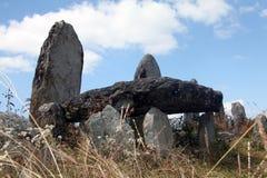 巨石在Mawphlang神圣的森林里 库存照片