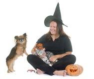 巫婆和宠物 库存照片