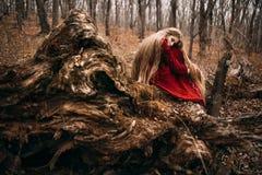 巫婆在森林里 免版税库存图片