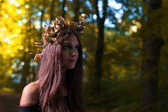 巫婆在黑暗的森林里 免版税库存照片