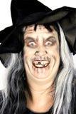 巫婆妇女 免版税库存图片