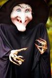 巫婆玩偶 免版税图库摄影