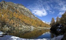 巫婆(蓝色湖)阿尔卑斯Devero的湖 图库摄影