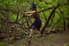 巫婆 Vedminsky盖帽和巫婆森林 库存图片