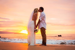 已婚夫妇,新娘和新郎,亲吻在美丽的日落 免版税库存照片