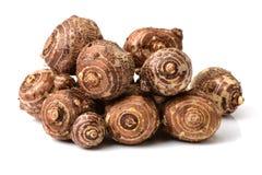 已经是能guangxi有历史记录许多营养素被种植的导致的富有的芋头非常方式的世纪瓷煮熟的不同的著名食物 这是在中国的广西生产的芋头,它种植了h 免版税库存照片