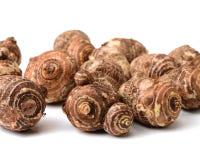 已经是能guangxi有历史记录许多营养素被种植的导致的富有的芋头非常方式的世纪瓷煮熟的不同的著名食物 这是在中国的广西生产的芋头,它种植了h 免版税库存图片