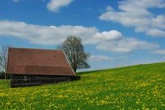 巴伐利亚上色德国弹簧 库存照片