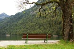 巴伐利亚在nigsee岸附近的长凳k湖 库存图片