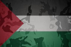 巴勒斯坦的旗子卡其色的纹理的 装甲攻击机体关闭概念标志绿色m4a1军用步枪s射击了数据条工作室作战u 库存图片