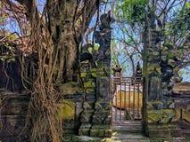 巴厘岛寺庙,印度尼西亚 免版税图库摄影
