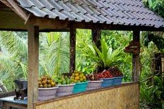 巴厘岛果子停转 免版税库存照片