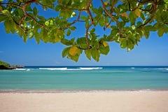 巴厘岛海滩异乎寻常热带 图库摄影