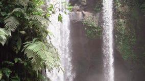 巴厘岛瀑布,下来水goind与在慢动作,在狂放的绿色密林附近的瀑布的巨大的力量在雨以后 影视素材