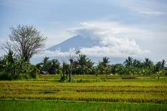 巴厘岛火山爆发 库存图片
