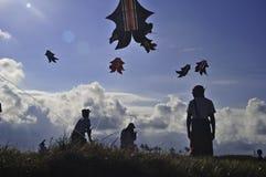 巴厘岛风筝节日 库存照片