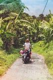 巴厘岛,印度尼西亚- 2017年11月25日:一辆摩托车的年轻愉快的妇女在热带巴厘岛的密林雨林 免版税库存照片