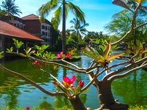 巴厘岛,印度尼西亚- 2012年4月10日:盐水湖和公园Ayodya手段的巴厘岛在努沙Dua,巴厘岛,印度尼西亚 库存照片