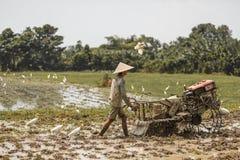 巴厘岛/印度尼西亚- 03 05 2018年:人犁与大的领域马达块 免版税库存图片