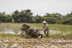 巴厘岛/印度尼西亚- 03 05 2018年:人犁与大的领域马达块 库存照片