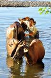 巴厘语威胁女孩洗涤的年轻人 库存照片