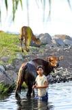 巴厘语威胁女孩洗涤的年轻人 库存图片
