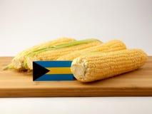 巴哈马在一个木盘区下垂用在白色bac隔绝的玉米 免版税库存图片