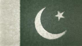 巴基斯坦的原始的3D旗子图象 库存照片