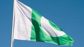 巴基斯坦的状态旗子 股票录像