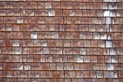 巴尔多, tavaillon,从瑞士的tavillon典型的木瓦片 库存照片
