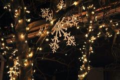 巴尔的摩圣诞灯 库存照片