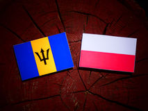 巴巴多斯下垂与在被隔绝的树桩的波兰旗子 库存例证