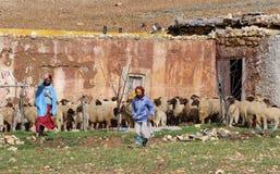 巴巴里人摩洛哥人村庄 库存照片