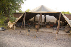 巴巴里人摩洛哥帐篷 库存图片